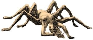 9_Arachne (2)